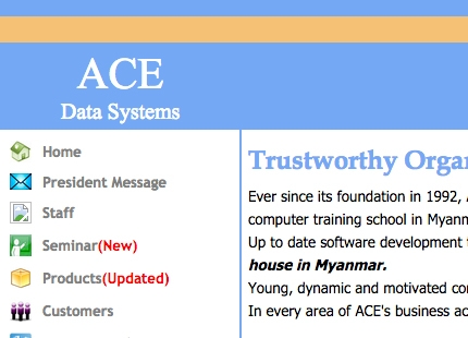 ACE Data Systems